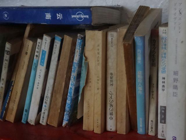 長い旅の中でじっくり読みたいのか小説が多い。