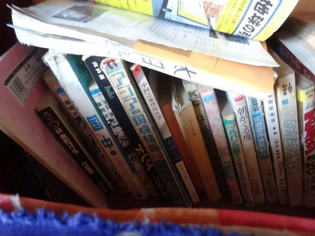 小説のほかにも、ガイドブックや漫画も目立つ