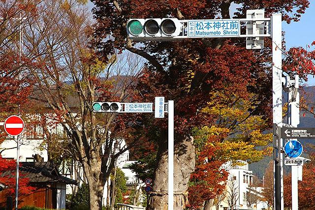 松本神社前だ。俺の名前が信号に!と興奮して撮った。