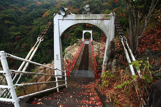 遊歩道を進むと下流に架かる吊り橋に出る