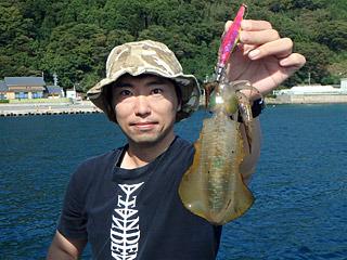 防波堤から釣れるイカといえばアオリイカ。だが僕の腕前だと離島とかいかないと釣れない。