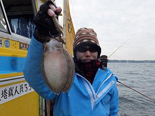 この丸いのはシャコをエサにして釣ったスミイカ(コウイカ)。