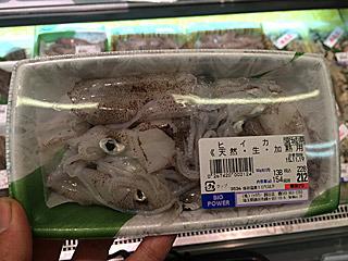 うまいイカなので新鮮なのを見かけたら買ってみてください。とびきり新鮮がよければ釣ってください。