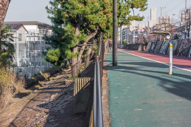 向かって右が海。左が山側。浦安の初代堤防よりもずっとダイナミックに高低差がある。いかにも「海から陸を守ります!」って感じだ。