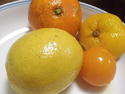 鍋から引き上げたレモン、みかん、ゆず、きんかん。一応、普通に食べられます。まあ、味の方はちょっとね。
