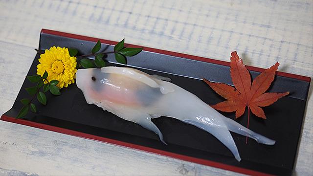 寿司界のマドンナ、コイちゃんのソロ撮影。しばらく置いて眺めたい。