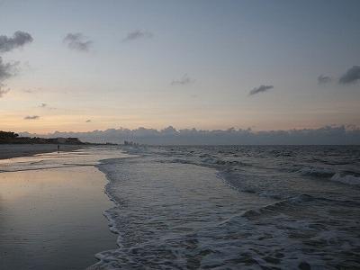 冬の房総半島。カスザメは砂地を好むので、砂浜やその周りの漁港を探していく。しかし寒い。