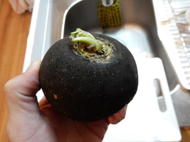 そのうちの一つ、黒丸大根。普通の大根より辛味が強いが、焼くと辛味が抑えられて、レンコンのようなぽくぽくした食感になる、とのこと。