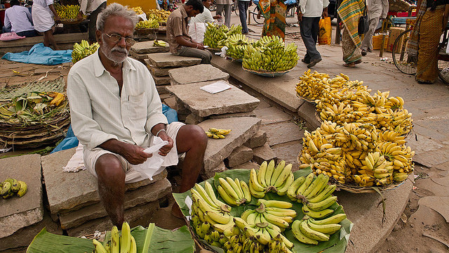 一方こちらはインドのバナナ屋さん。