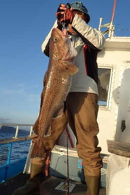 A giant cod!