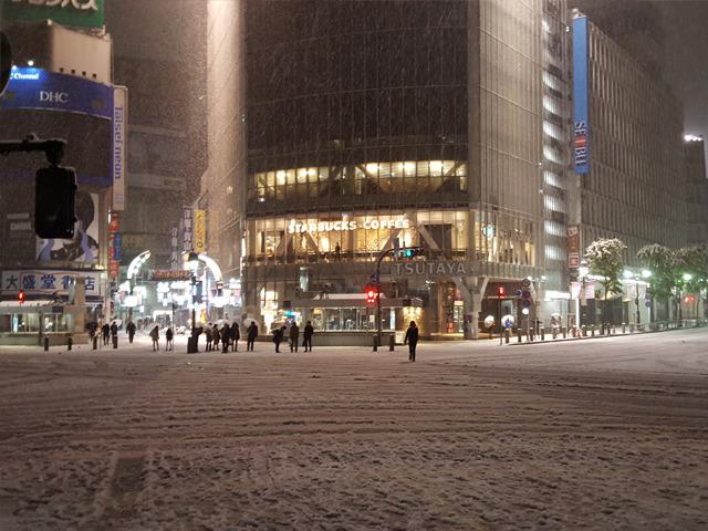 渋谷にも雪。1滴も降らないかも、と言ってたんですが…