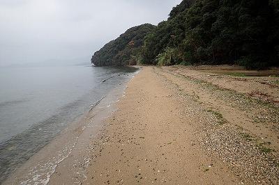 冬の砂浜を練り歩く。ライバルに差をつけようと夜明けと同時に捜索開始。
