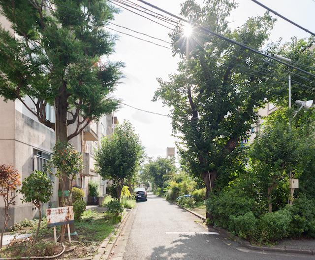 いやー、なんど訪れてもここが東京都心ど真ん中とは思えない不思議さ。