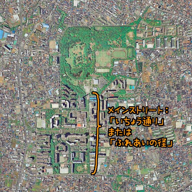 こうして航空写真で見ると、青山と同じように周辺と比較して敷地内を貫くこの道の秩序だった感じが際立つ(「地理院地図」の「写真・最新(2007年~)」より)