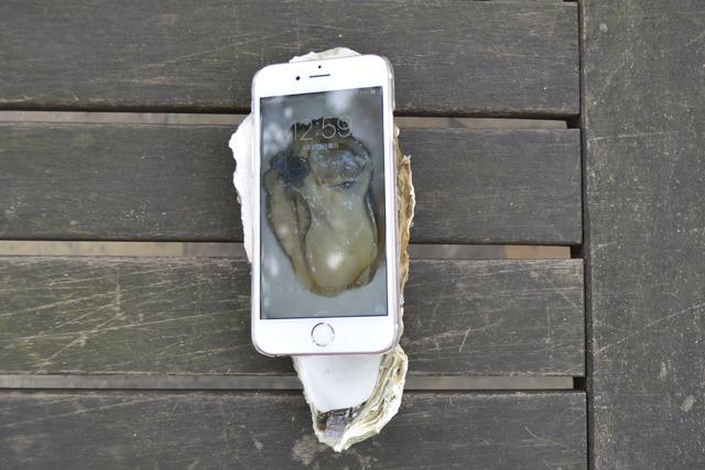 待ち受け画像の効果で、バーチャル牡蠣