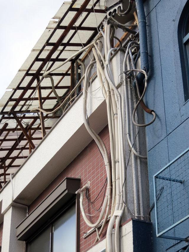 これは何ていう生物の触手なんだろう。屋上がどうなってるのか、気になりすぎる