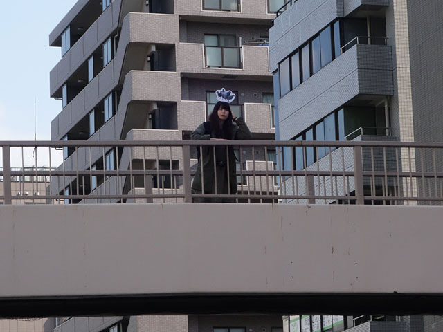 A.  ハト、歩道橋の上にいる人の頭の上にいました