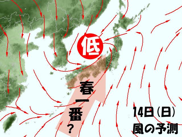 低気圧が日本海を通れば、春一番の可能性もあるが…