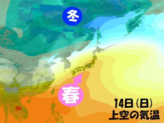 今週後半は、春の空気が一時的に日本列島に。今の予報から変わらなければ、なんですが…。