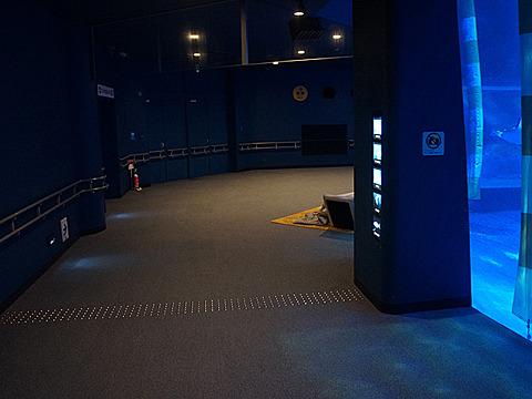 おお、まさに青の世界。大水槽を回り込みながら下っていくと…あれがそうか…。