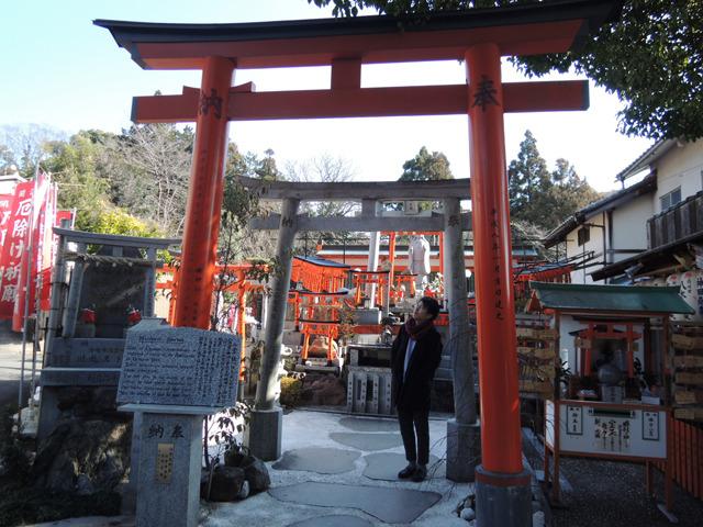 神社全体の横幅はこれぐらい。奥ゆきもちらっと見えている建物が最奥