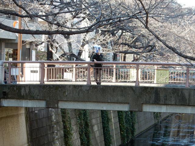 橋でのんびりしたりしました。