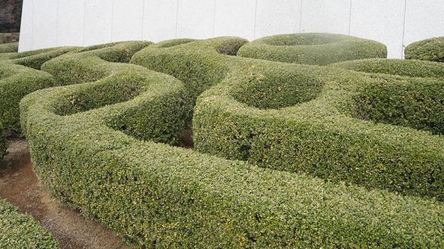 ふもとの植栽ばうねうねかっこよくカットされていた