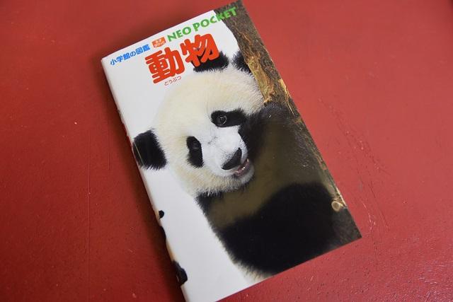 むしろパンダの方が太ってないか?