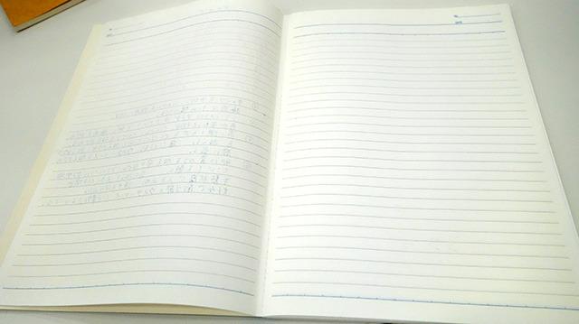 2ページ目以降、見事にまっしろ