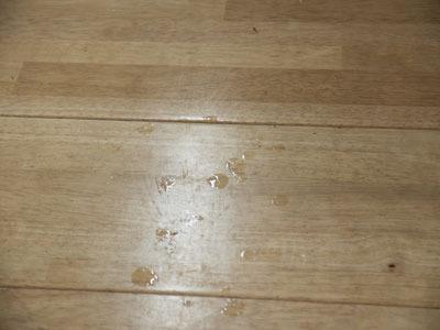 将棋による汗が床にしたたっている。