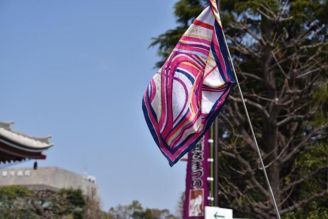 ガイドさんの旗も国ごとに個性が見られる