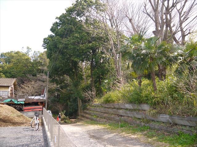 ここがその竹林公園か…って、