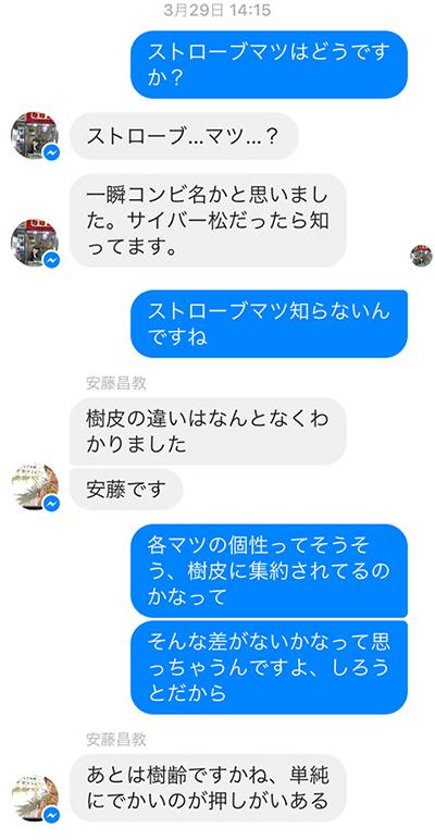 ストローブマツを知らないちぷたそさん。安藤さんと二人で松を押すことの答え合わせをする