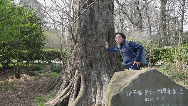 精子発見のイチョウ押し。植物にも精子があるという日本人の偉大な発見、それをそっと押すという静かな興奮。これが女子校なら今授業になってないだろう