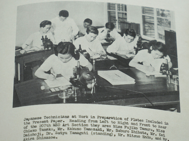 Mosquito Fauna of Japan and Korea(1950、モノグラフ)より。立ち姿で監督しているのが左仲博士。