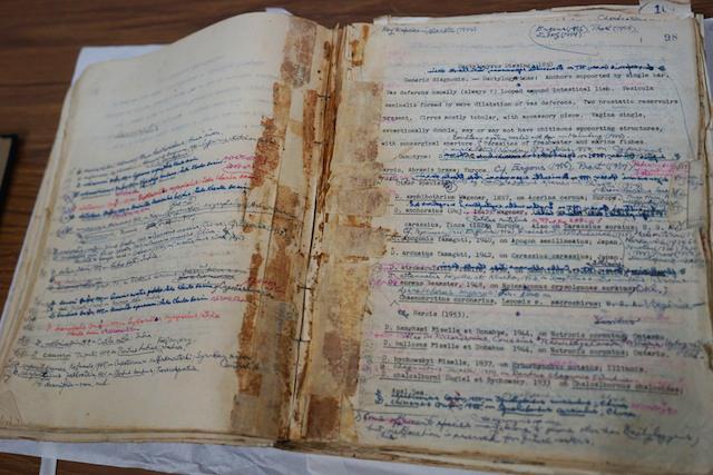 左仲直筆の原稿、情報の更新により、何度も上書きされている。紙面から伝わる熱気に背筋が伸びる……。