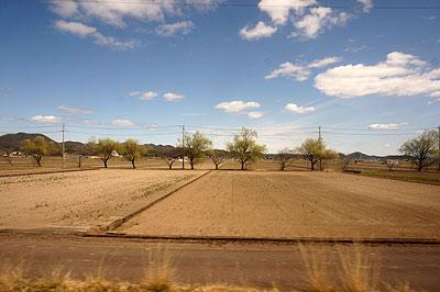 長良川線と言いつつ、外は農地が続く