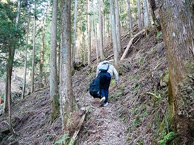 すると、ここから山道は険しさを増し、二人ともキャリーカートをもう10cm、高く持ち上げて歩く必要があった