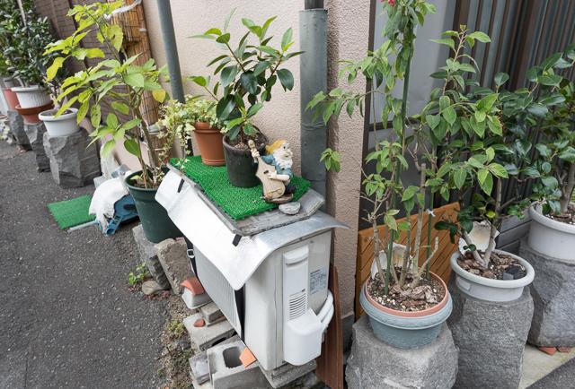 室外機の上にもよくいる。ひとり。エアコン配管観察家の斎藤さんは知らず知らずのうちにたくさん遭遇しているのではないか。