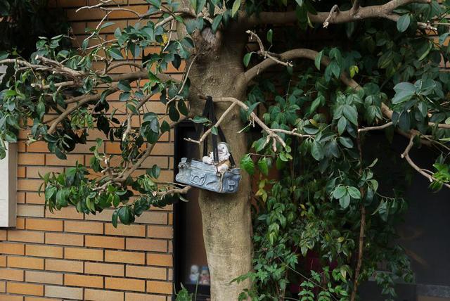 もはや「おちてたから樹にかけておいた」(いわゆる「善意のはやにえ」)のようになっている。伊藤さんより。