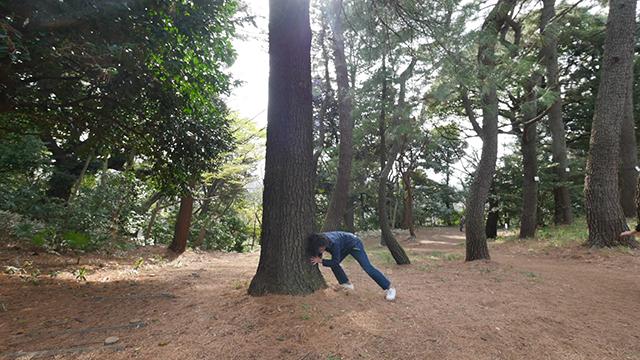 肩で声を聞き、手で樹皮を感じる。樹木としての松を押し思い知ったのは自然の偉大さであった。いま若い女性に人気の「松をおす」をおっさん2人が全身で挑む。