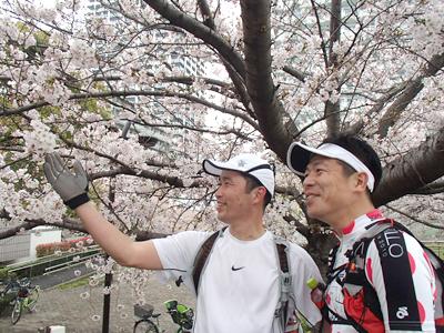 汗を流しながら桜を愛でるオッサン二人。この辺りでは、こんな映像誰が喜ぶんだ?という写真を無駄に何枚か撮っていた。