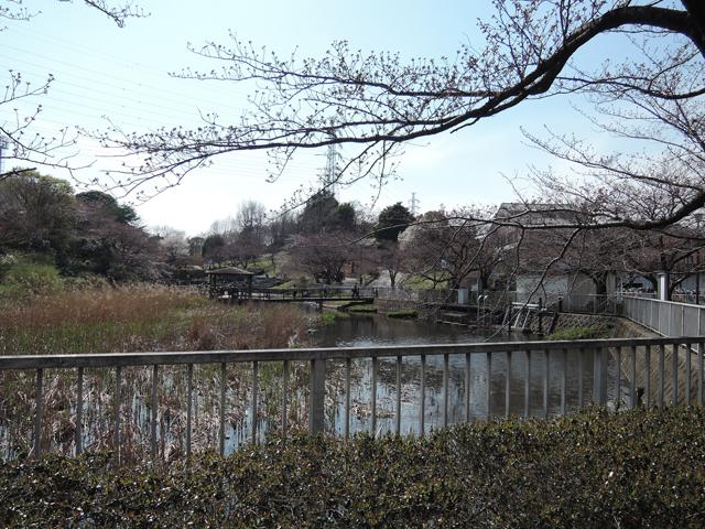 横浜市営地下鉄の駅がすぐそば、岸根公園。電車に乗ろうか本気で迷う