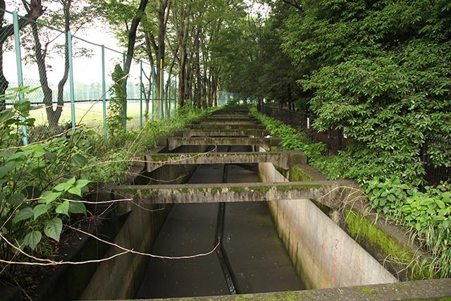 細い川の中のさらに細い溝の中をほんの少しの水が流れる
