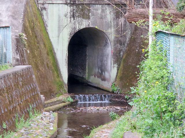 トンネルの中はよく見るとレンガだった。実は歴史ある構造物なのだろうか