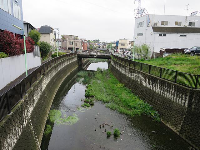 ふつうの都市部の川に見えるけど