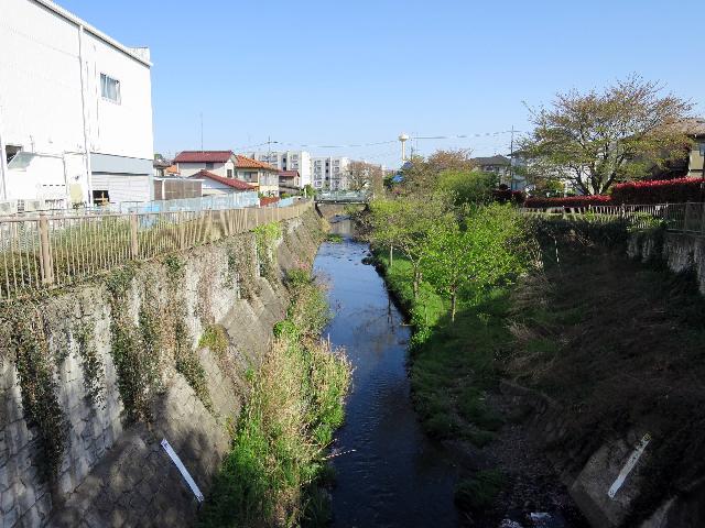 上流端からいきなりふつうの都市河川