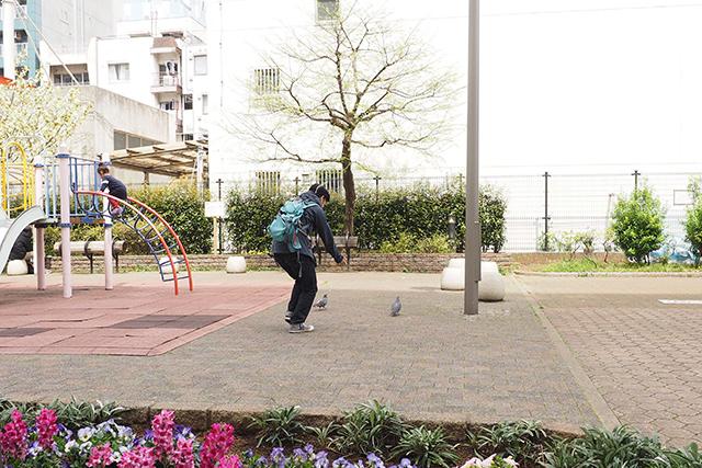 伊藤さんが突然ハトを追いかけだした。危険な人に見えて怖くなったが、追われたハトが飛び立って電線に乗った。ナイスプレー!