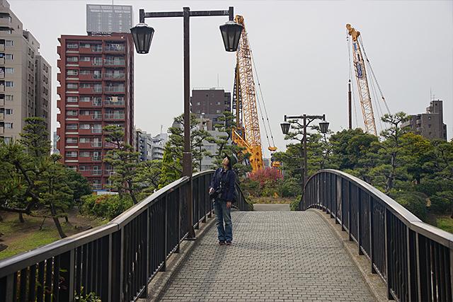 この「ゆりかもめ橋」がフンスポットのようだが、この日は残念ながらいなかった。