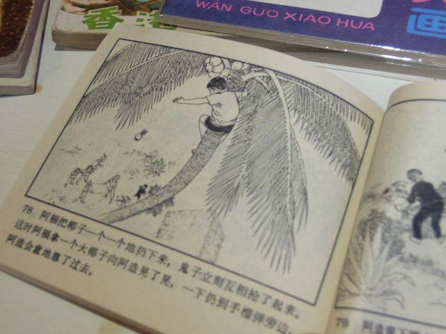 日本絡みでいえば、少年が日本軍と戦う本も。